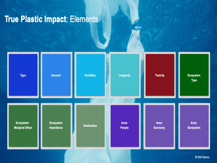 Elements of True Plastic Impact